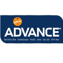 ITEA Soluciones TIC -  Advance